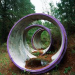 Concentric Circles, Forest Interventions, 2012. Inkjet print on luster photographic paper, 140x110 cm. Ed. 5+2 AP