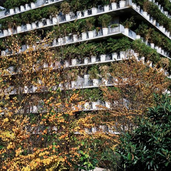 El macetero. Tower Flower, Paris.