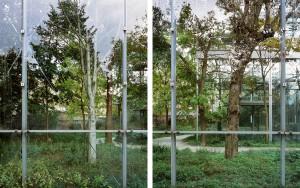 El herbario. Fundación Cartier, Paris.