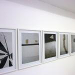 Alejandra Laviada, 2010. Exhibition