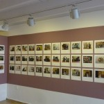 Vocational Panorama, 2014. Exhibition view.
