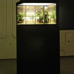 The Glass House,2009. Lambda D-prints in lightboxes, lamps, aluminium, 90 x 90 x 50 cm.