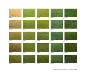 Green grass color chart. 2010. 95 x 110 cm