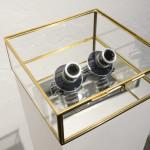 François Bucher&Lina López. Le Temps qui reste, 2014. Glass bell glasses with photographic lenses, 20 x 20 x 15 cm and  archival pigment print on cotton paper, 18 x 45 cmEd. 3 + 2AP