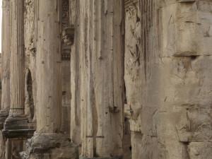 Septimius, 2015 (151015_130)