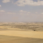 La Mancha #9, 2009. Archival pigment print on cotton paper,116x146 cm. Ed. 5+2 AP