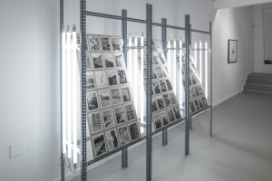 Installation. Neon installation, silver gelatine prints, variable sizes and materials.